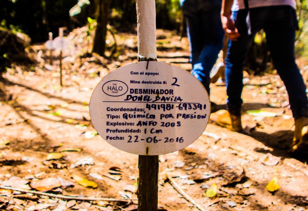 Más de 1.640 minas antipersonal destruidas en el Oriente antioqueño